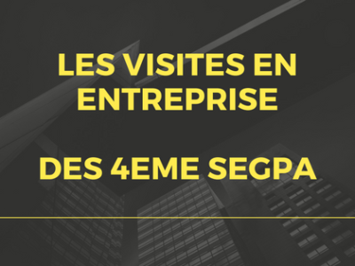 Visites d'entreprises : classe de 4ème SEGPA