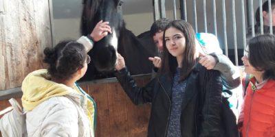 Les élèves ULIS à Cheval Passion