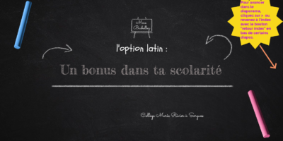 Option Latin : présentation